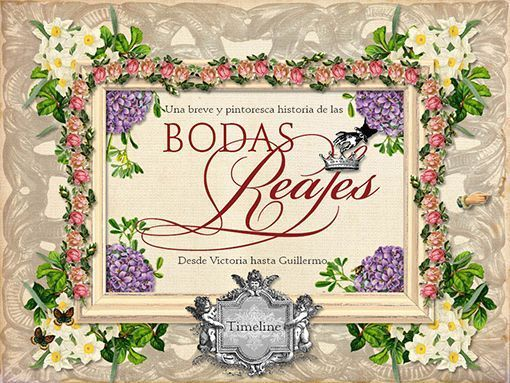 bodas-reales-terrier-digital-2
