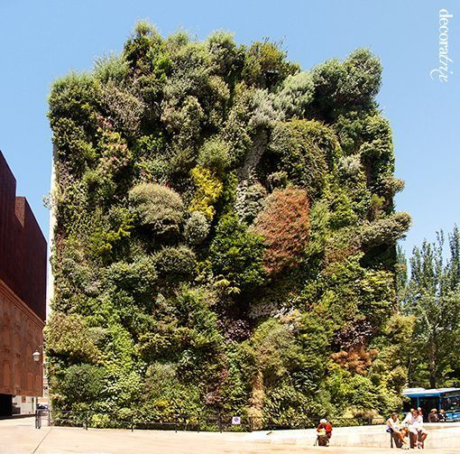 jardin_vertical_caiza_forum