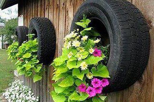 Neumticos para las flores del jardn