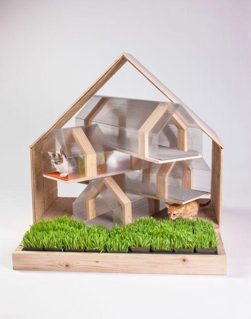 Casas de arquitecto para gatos - Casa gatos exterior ...