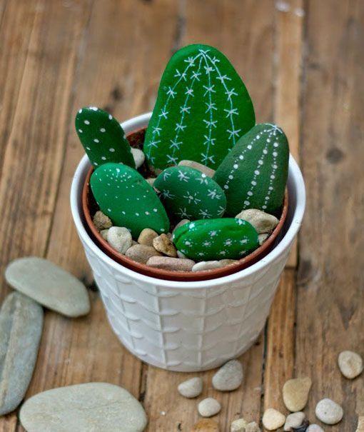 Cactus de piedra que nunca se marchitan