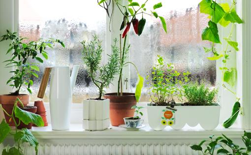 Macetas Y Soportes Para Tus Plantas