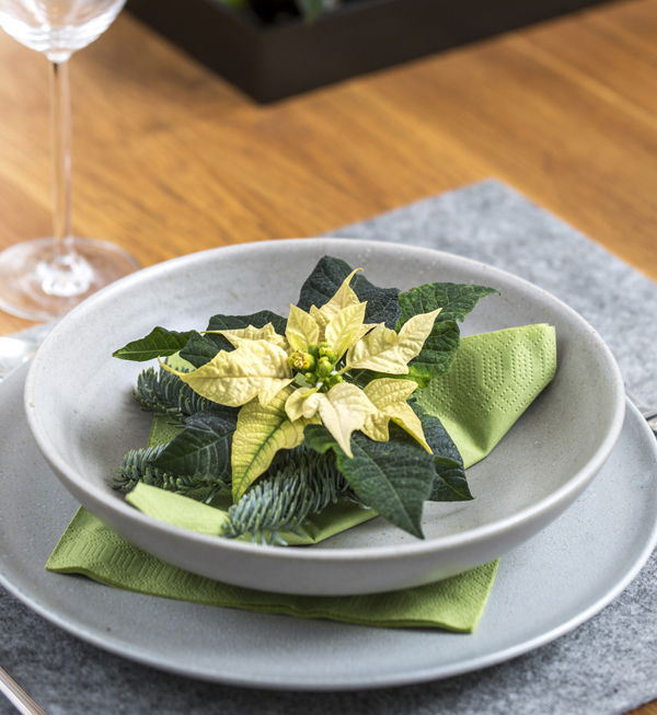 Adorno de plato con poinsettias amarillas. Foto Stars for Europe