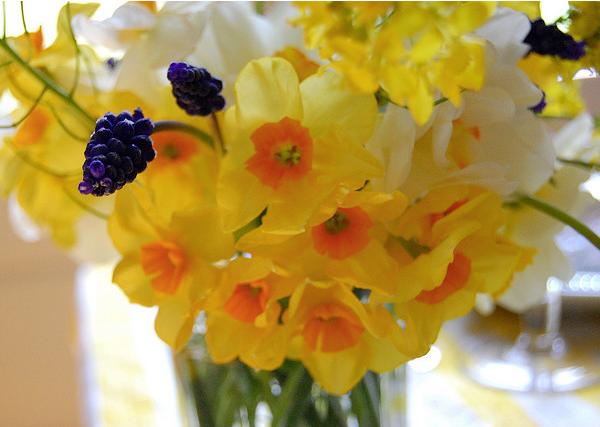 Jarrones Con Flores De Febrero - Narcisos-amarillos