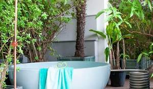decorar-con-plantas-al-estilo-tropical.jpg